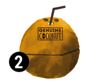 genuine coconut coconut water organic