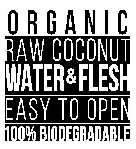 organic raw coconut water flesh
